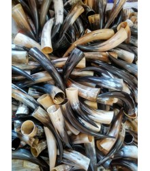 Preorder - Drinking Horns - Save 25%